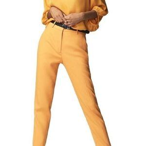 Massimo Dutti New Trouser Pants
